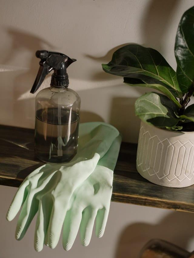 Gants et produit ménager